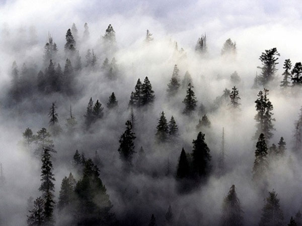 Mơ thấy sương mù là điềm báo hung hay cát?